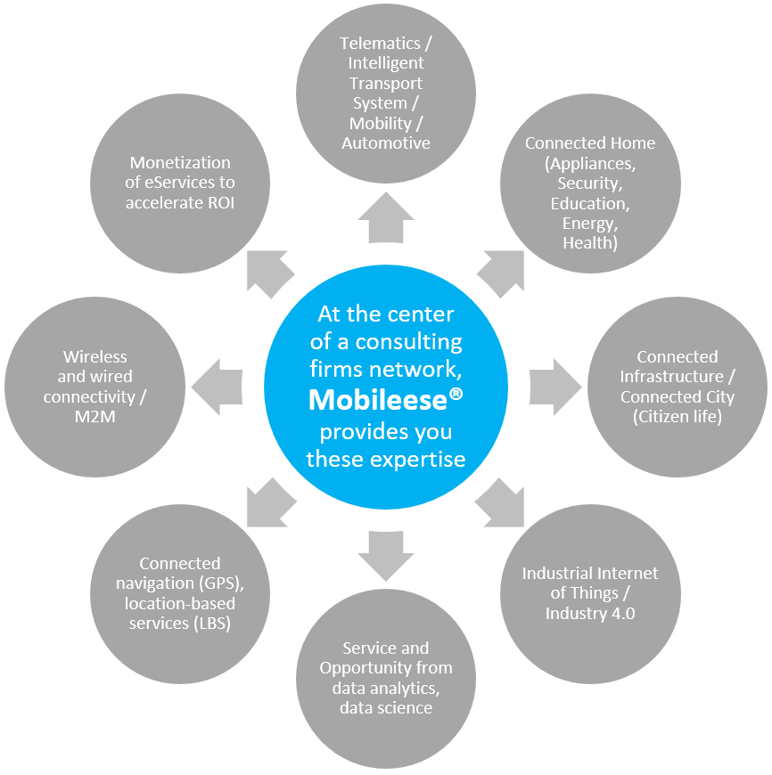 Mobileese - your digital Enabler